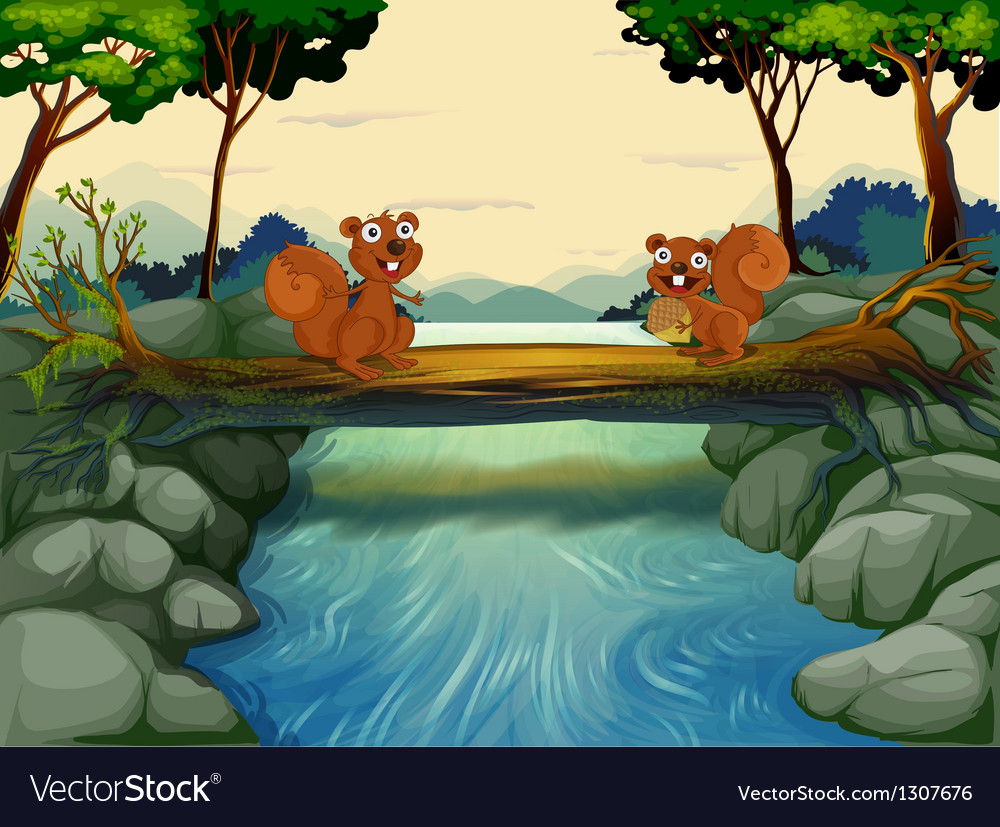 Two squirrels at the river vector image