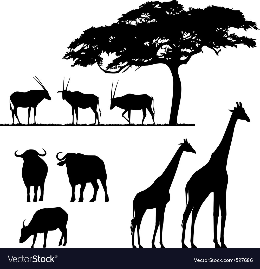 African animals vector silhouettes vector image