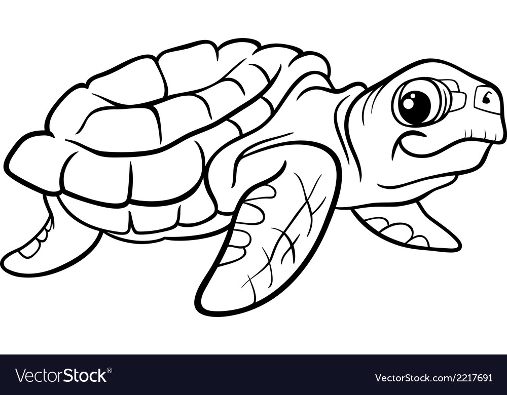 - Sea Turtle Coloring Book Royalty Free Vector Image