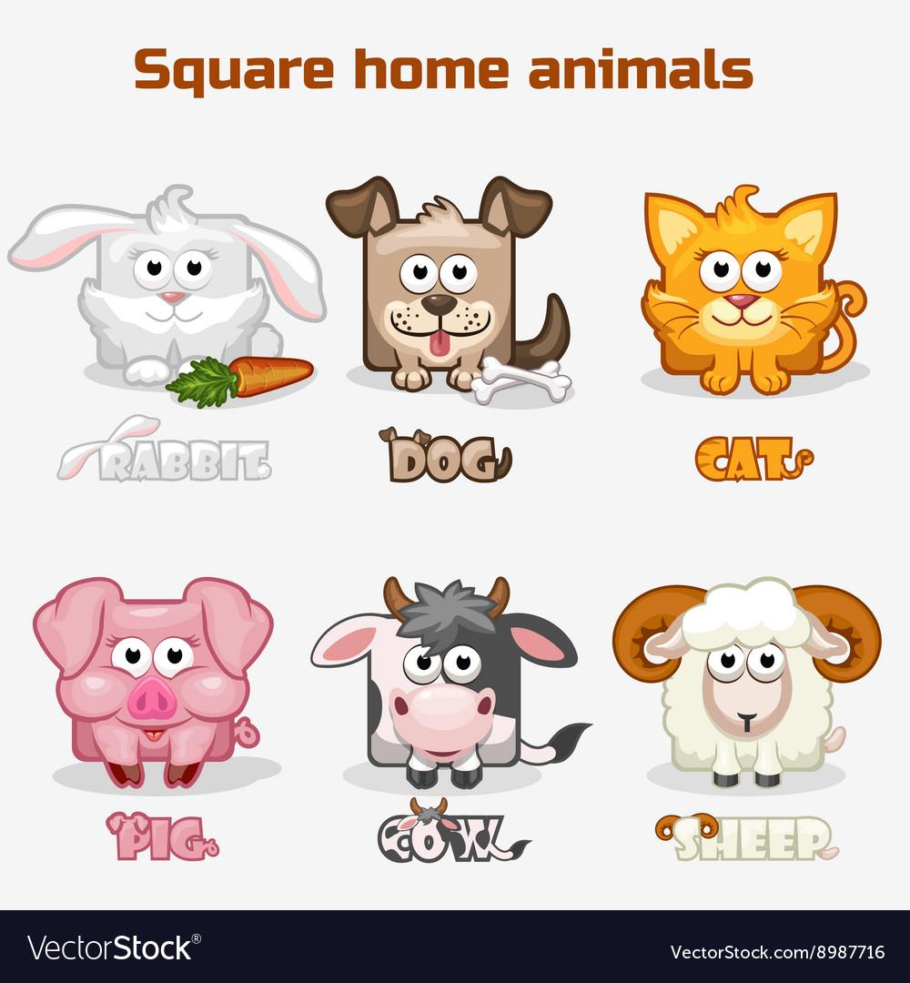 Cute cartoon square Home animals