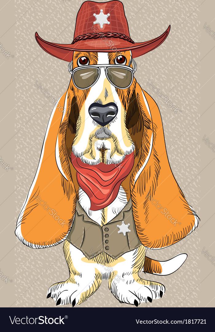 Basset Hound breed clothing sheriff vector image