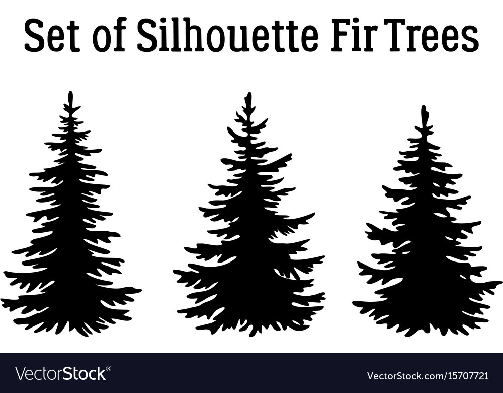 Christmas Trees Silhouette.Christmas Fir Trees Silhouettes