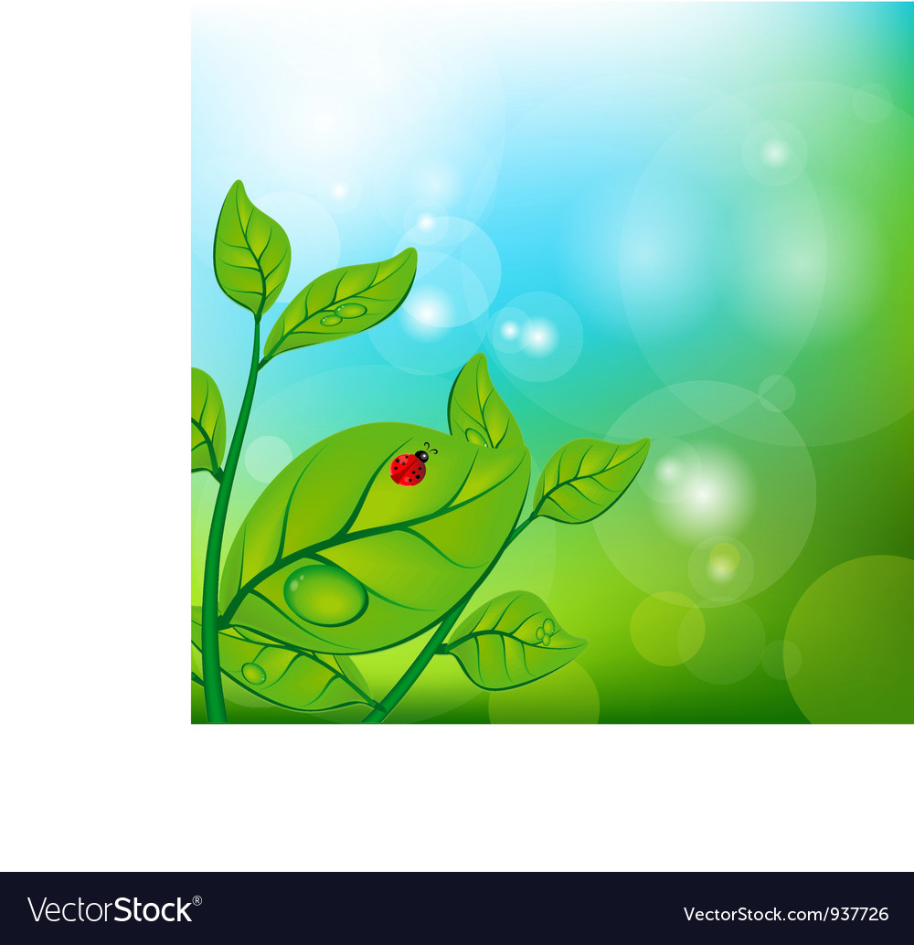 Sprig of a tree vector image