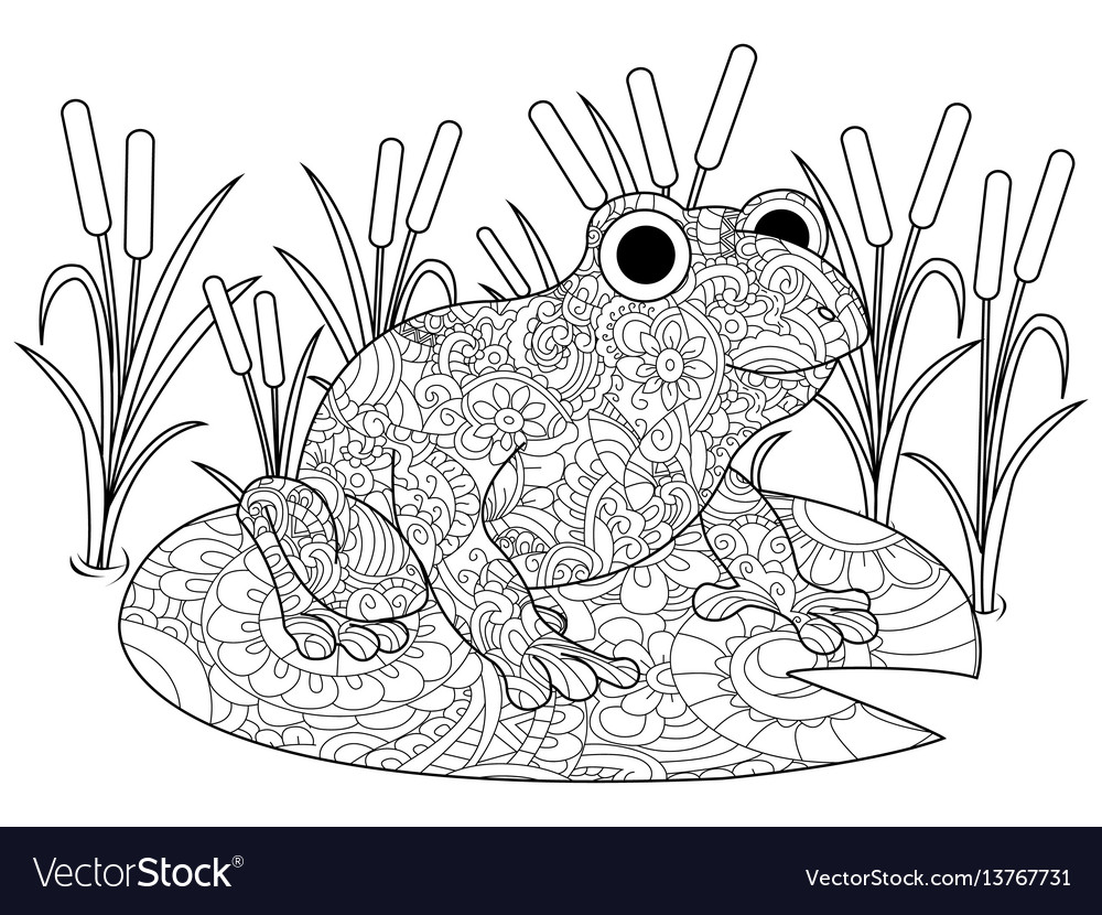 Frog on a lily in the swamp coloring book for