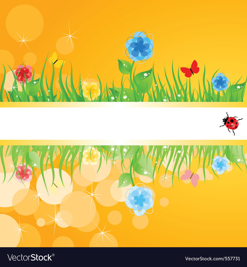 Green grass with flowers a vector image