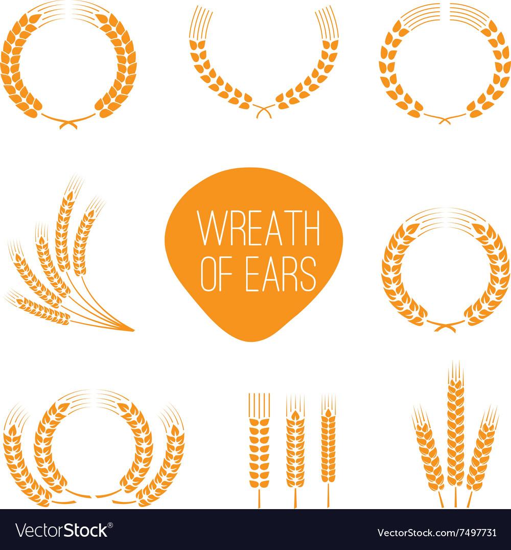 Wreaths of wheat ears vector image