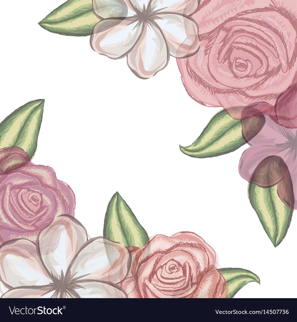 Colorful floral background of flowers in