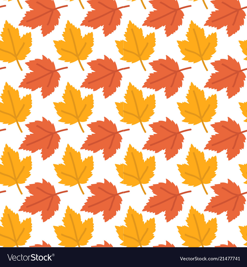 Autumn background maple leaves pattern imag
