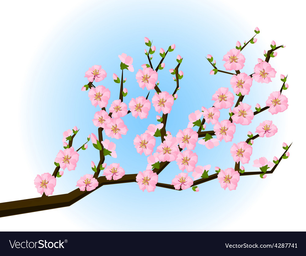 Consider, that asian style cherry blossom picuture recommend you