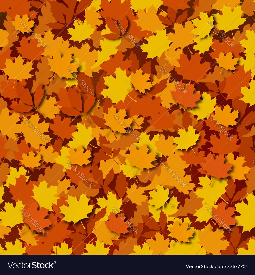 Autumn foliage background a large amount of