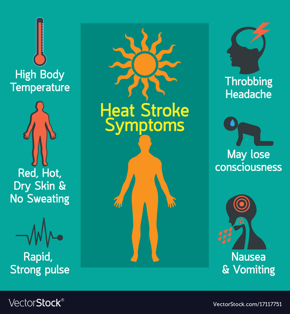Heat Stroke Infographic Royalty Free Vector Image