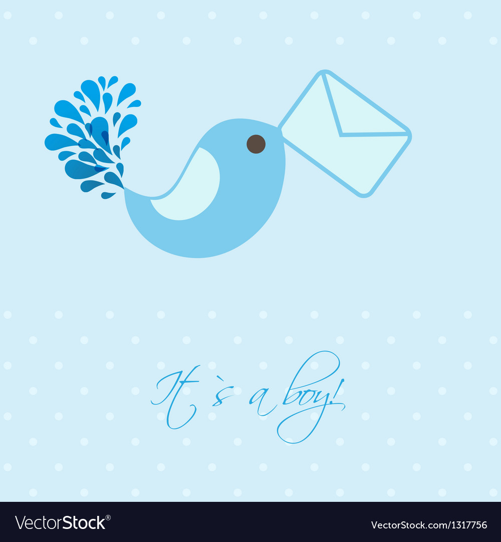 baby boy announcement card royalty free vector image