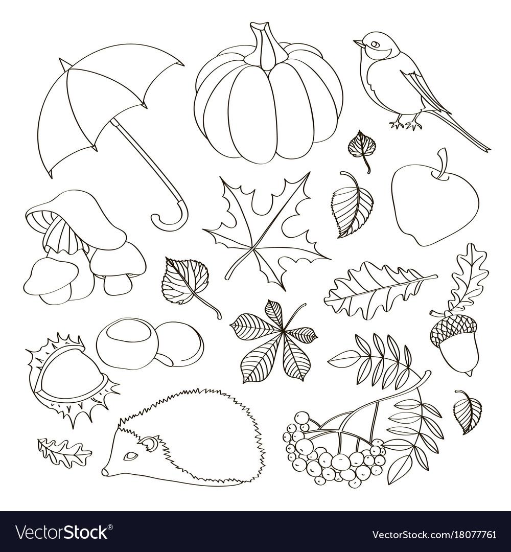 Set of autumn symbols
