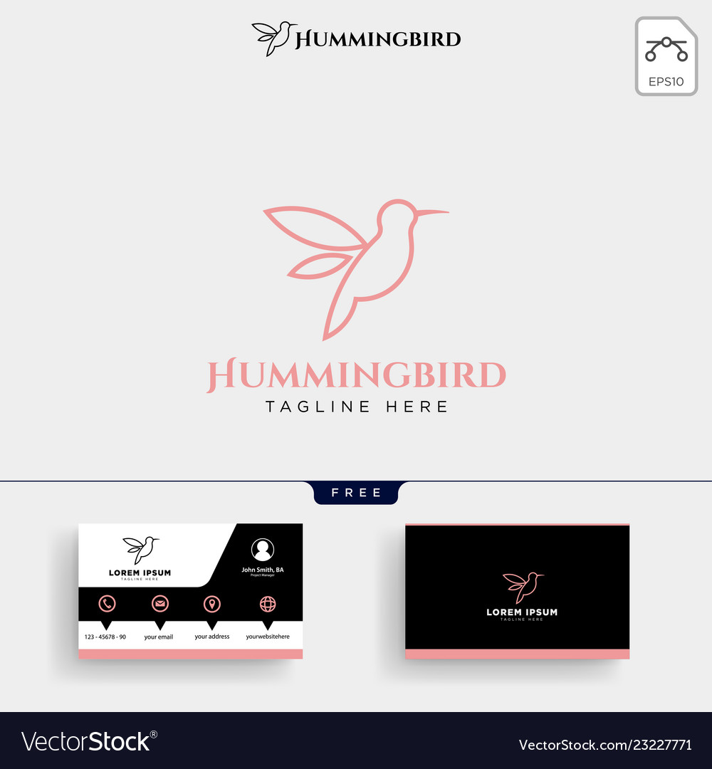 Humming bird beauty logo template and business