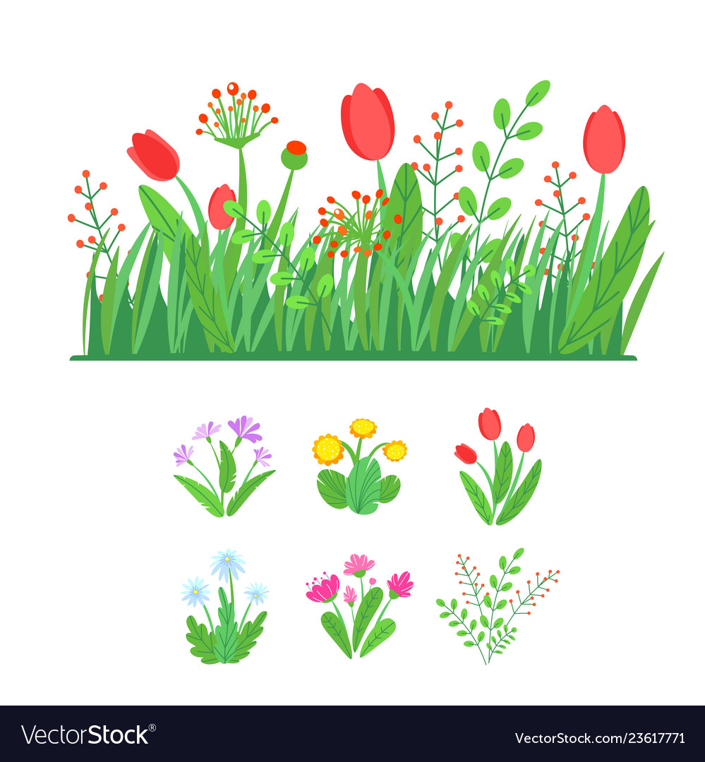 Spring garden blooming flowers with grass border