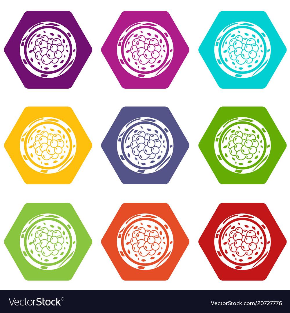 Sushi caviar icons set 9