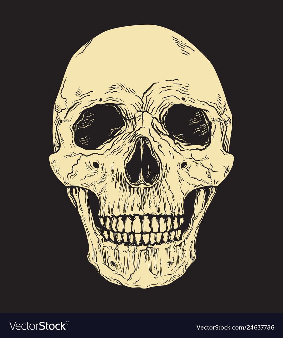 Human skull on black background hand drawn