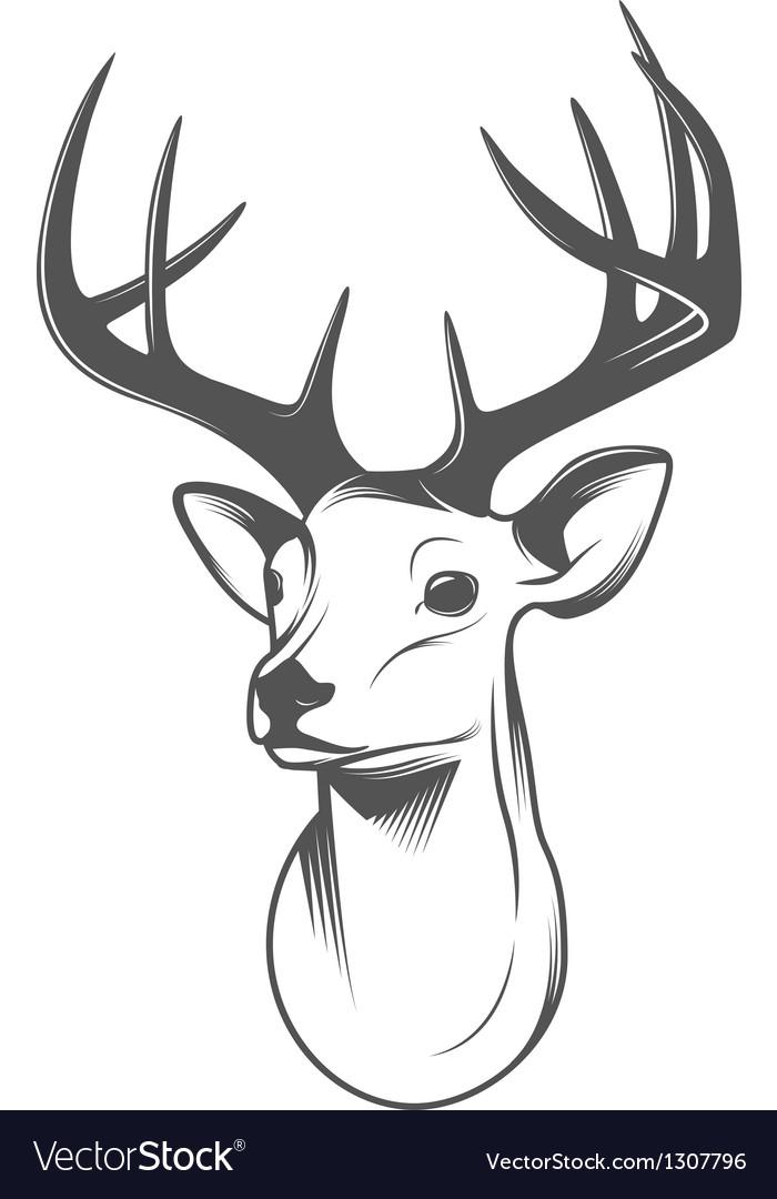 Reindeer Head Drawing Deer head isolated on white