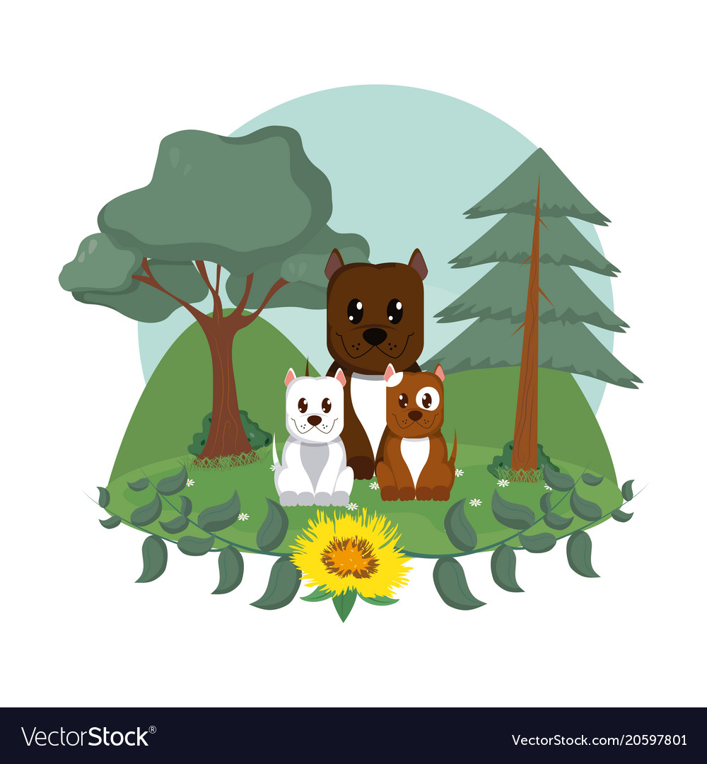 dogs family cute animals cartoons royalty free vector image
