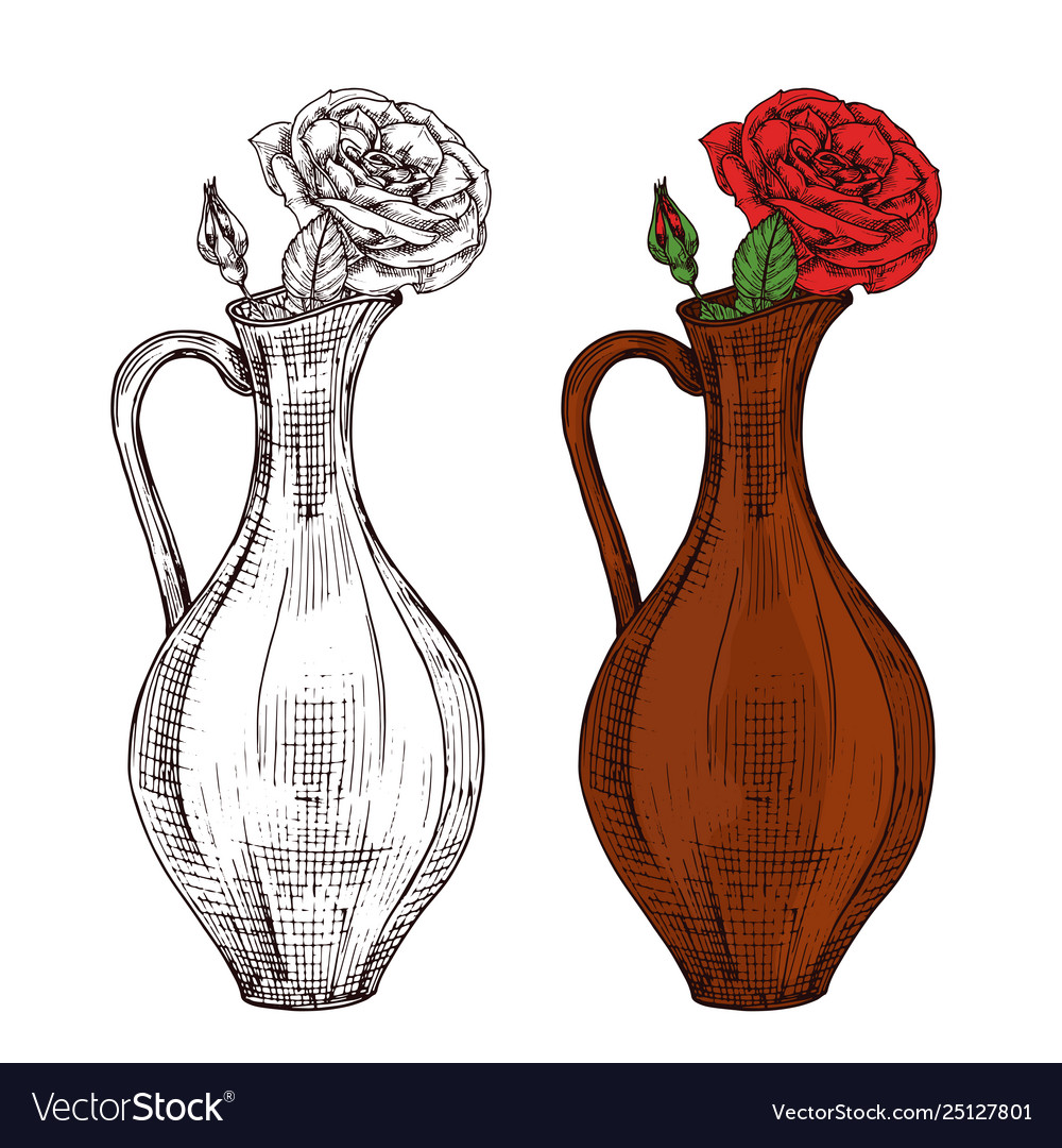 Sketch wine jug with red roses