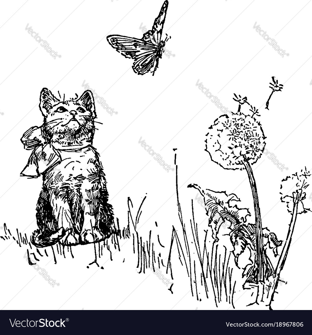 Cat watching butterfly vintage vector image