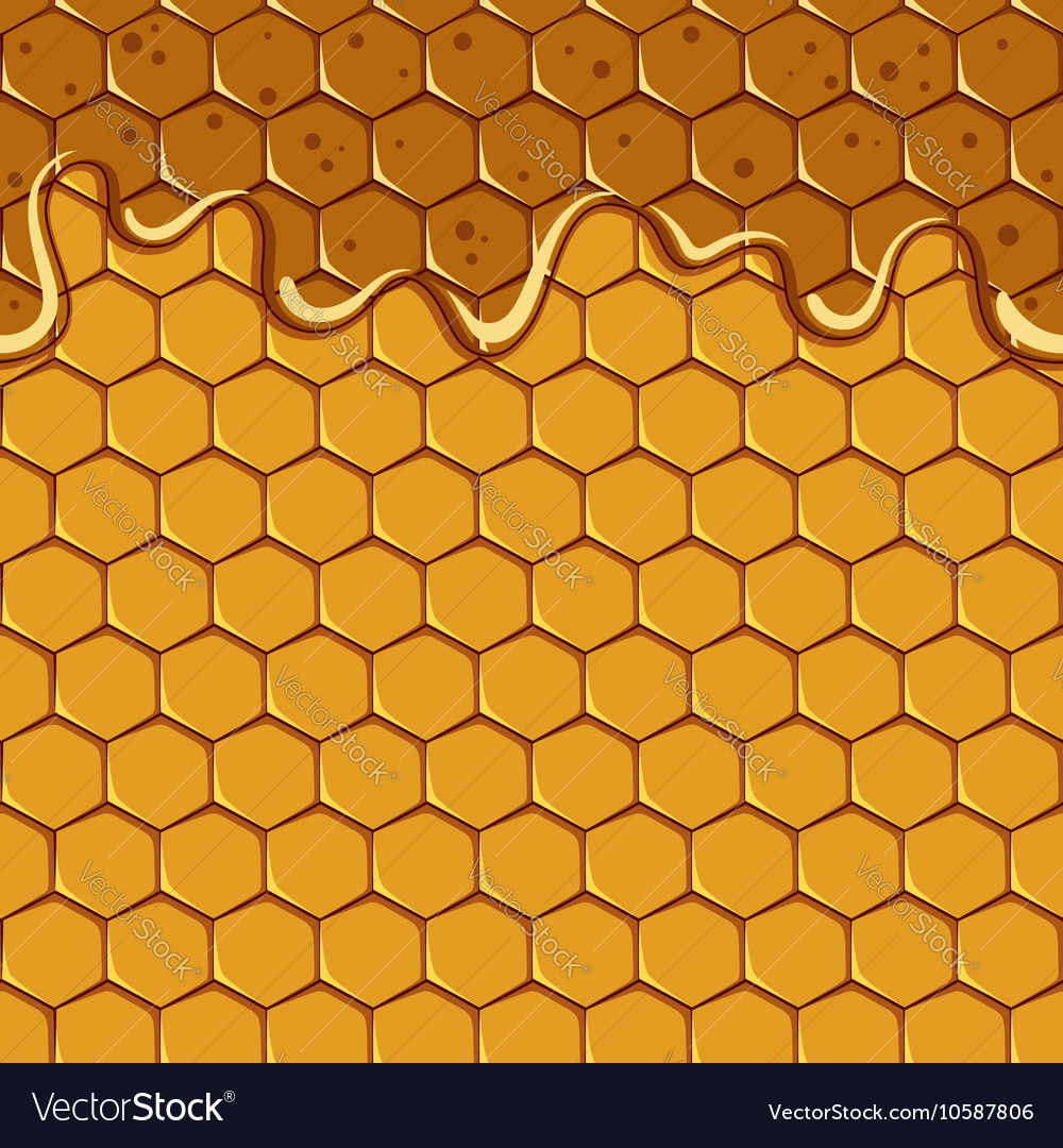 Seamless pattern of the honey and honeycomb