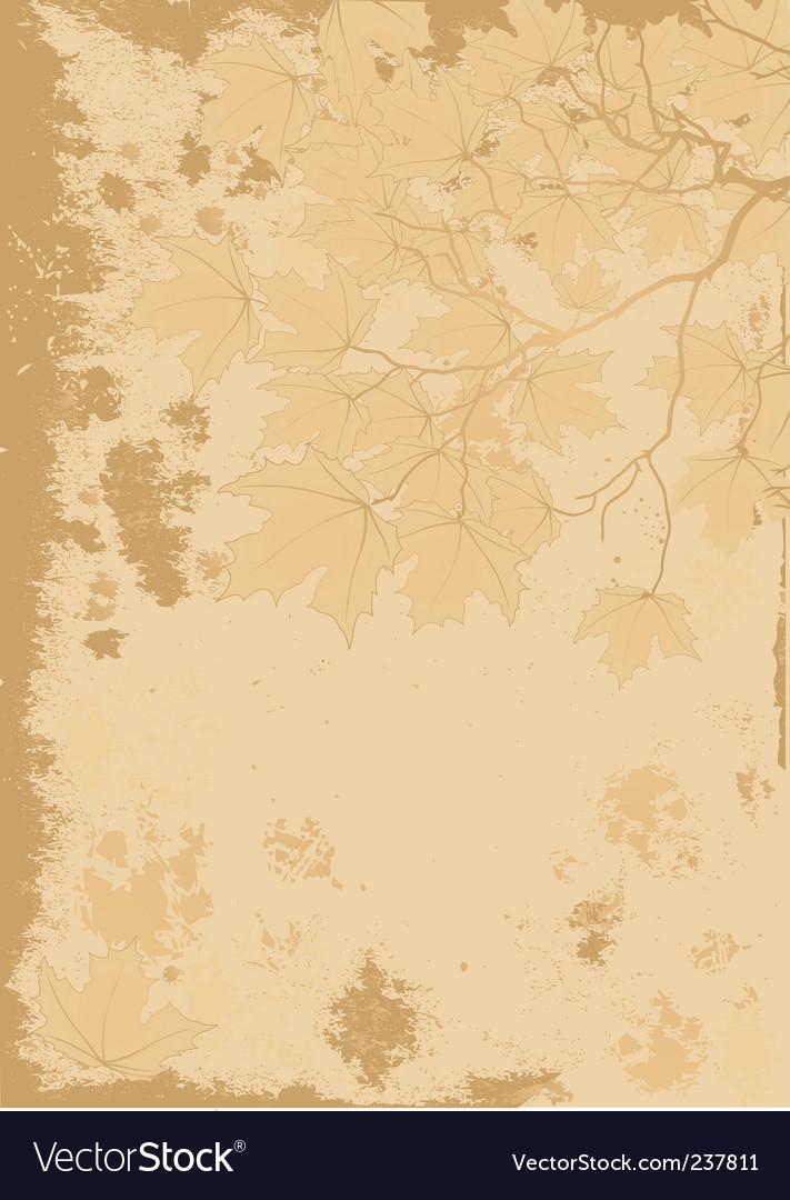 Autumn leaves antique background vector image