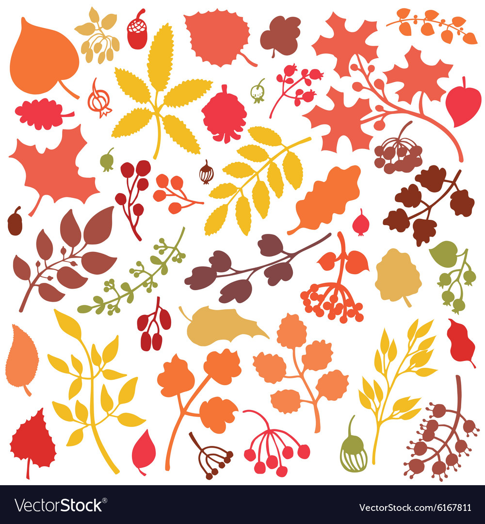 Autumn leavesbranchesberries setFall silhouette
