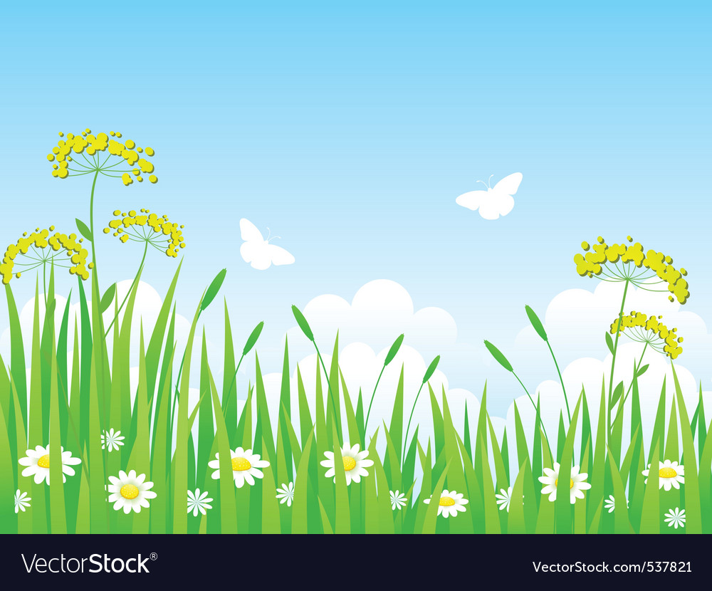 Green meadow with flowers and