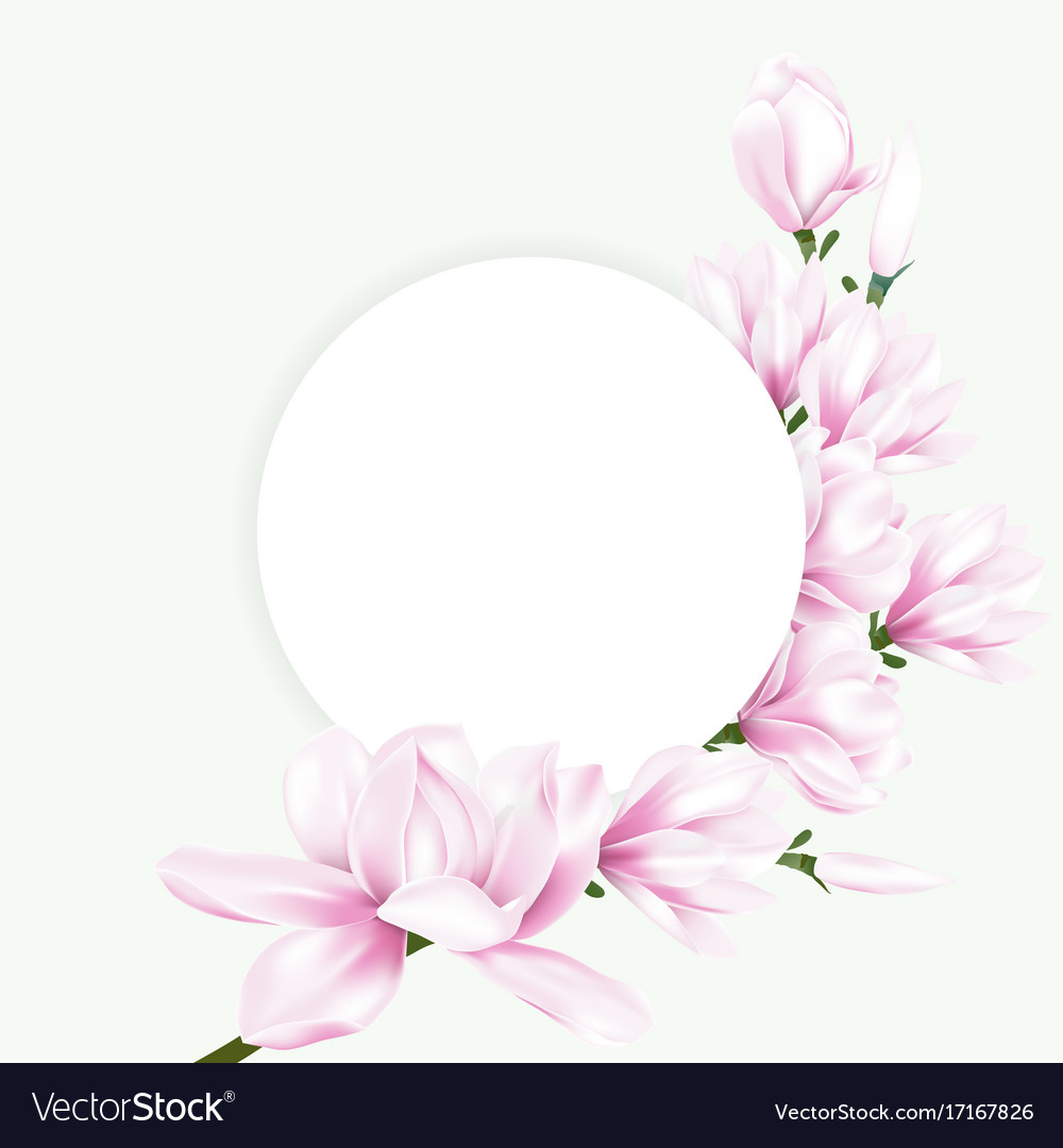 Round Paper With Pink Magnolia Flowers Royalty Free Vector