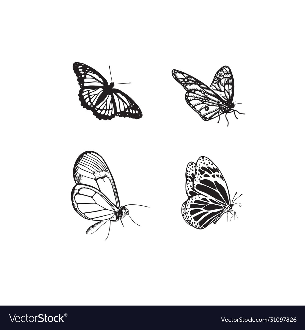 Set butterfly hand drawn