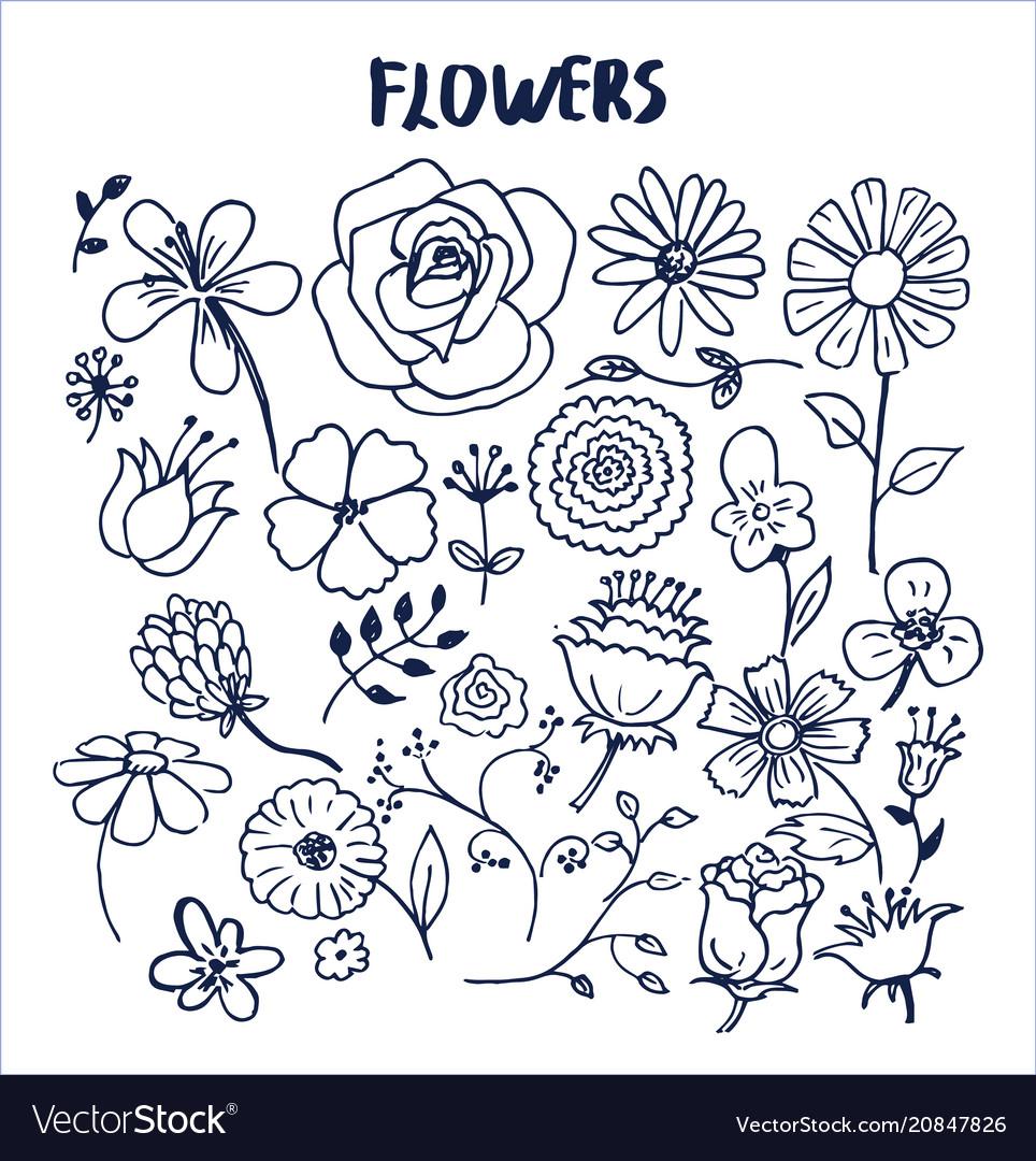 Set hand drawn flowers