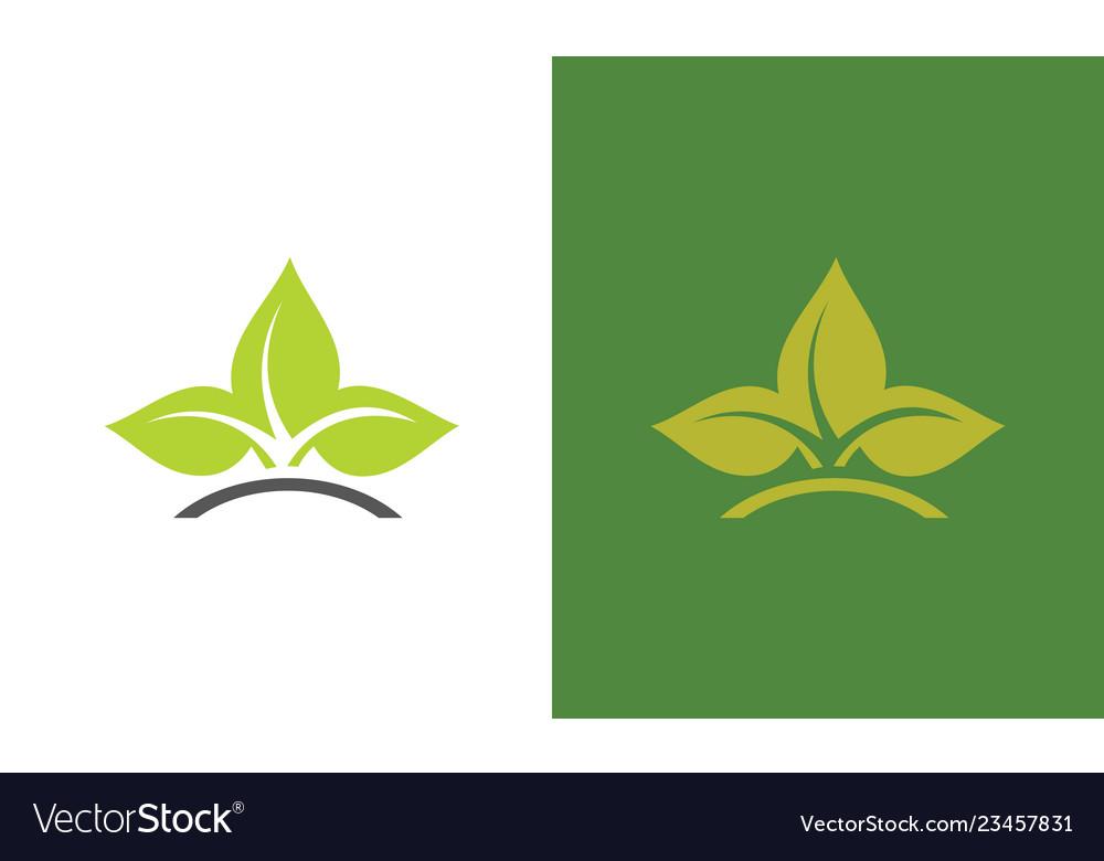 Leaf orrganic logo