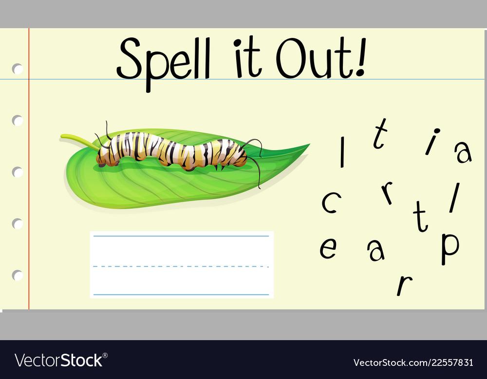 Spell english word caterpillar vector image