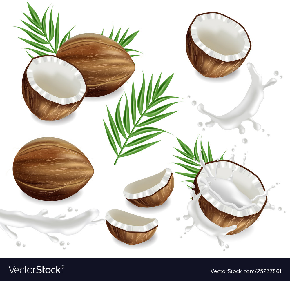 Coconuts with splash set collection