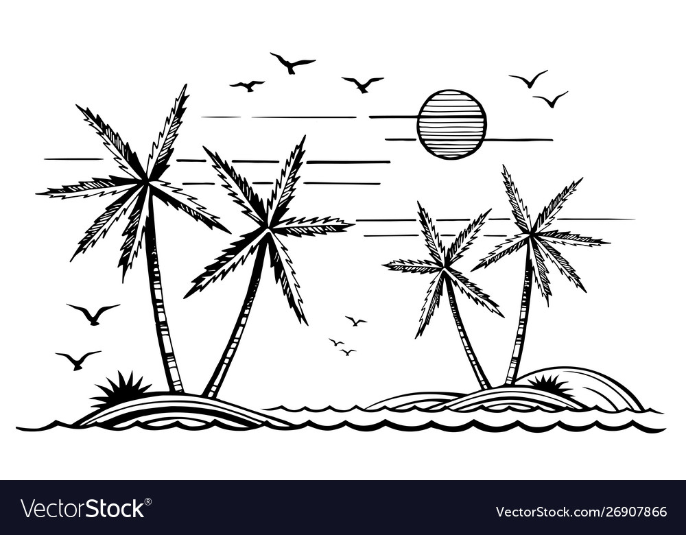 Palm trees on island and seagulls in sea