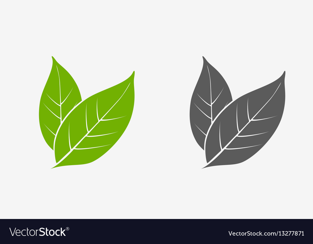 Tea leaves icon set green and gray isolated