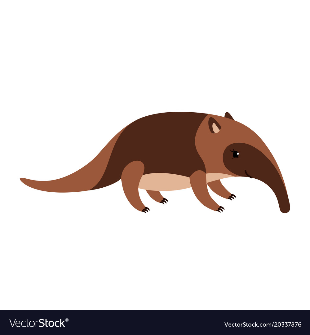 Cartoon Picture Of An Anteater | wallpaperzen.org