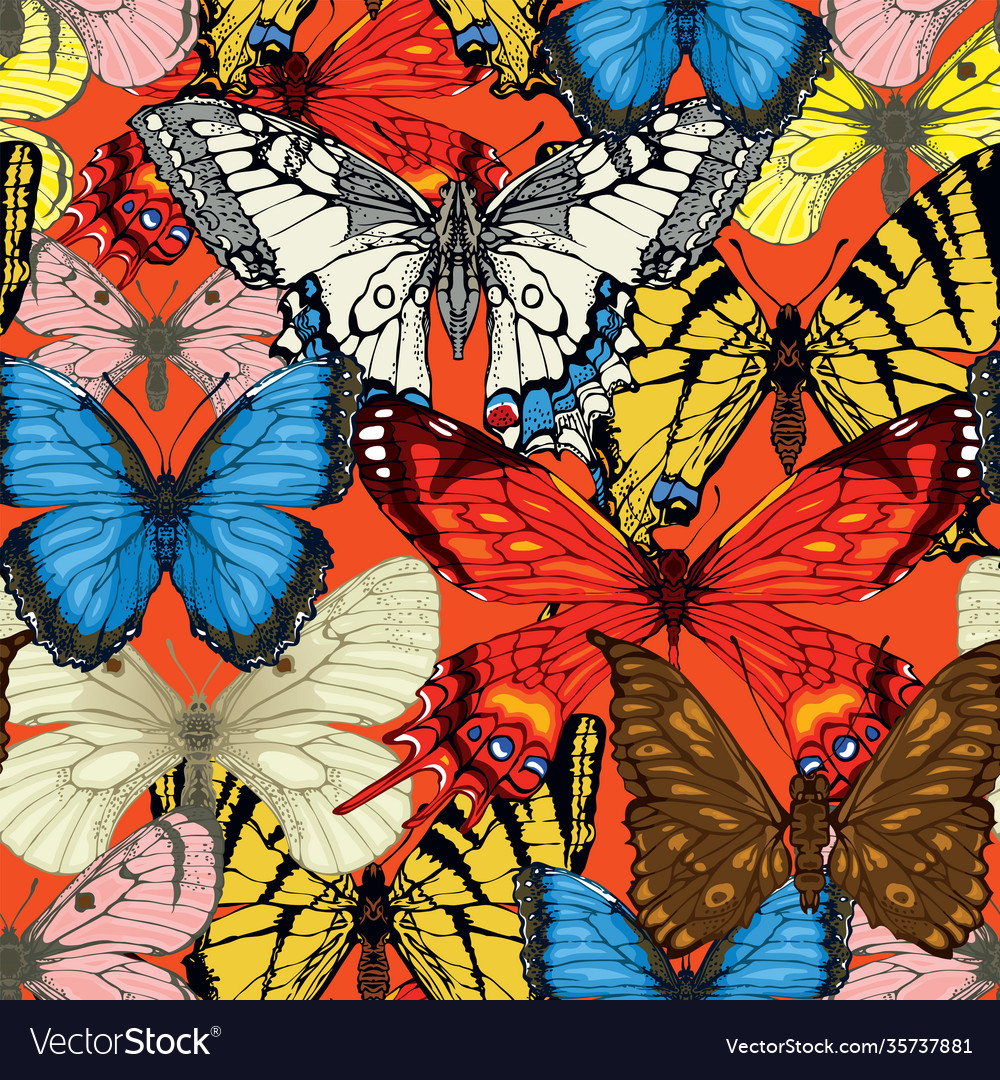 Seamless pattern with bright hand drawn butterfly