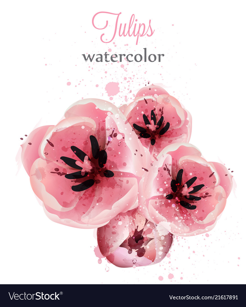Pink tulips watercolor card delicate