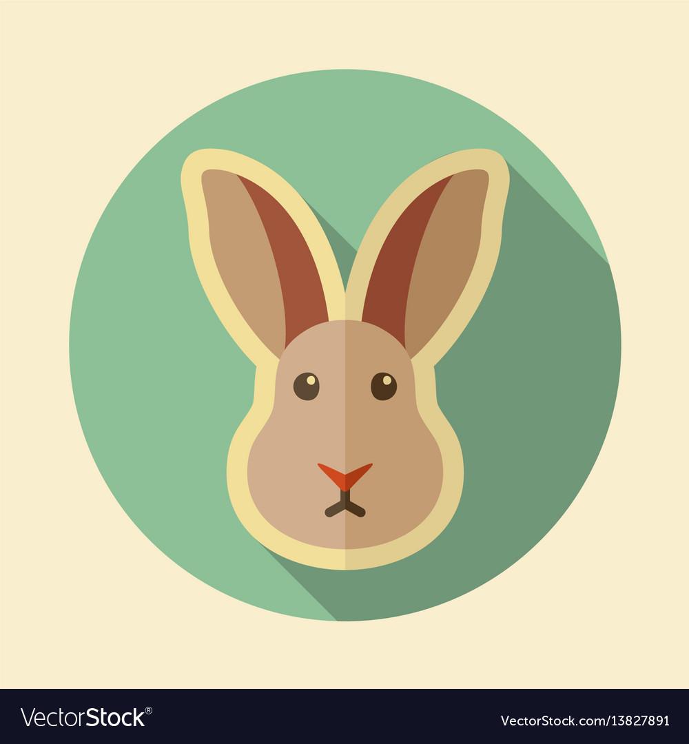 Rabbit flat icon animal head