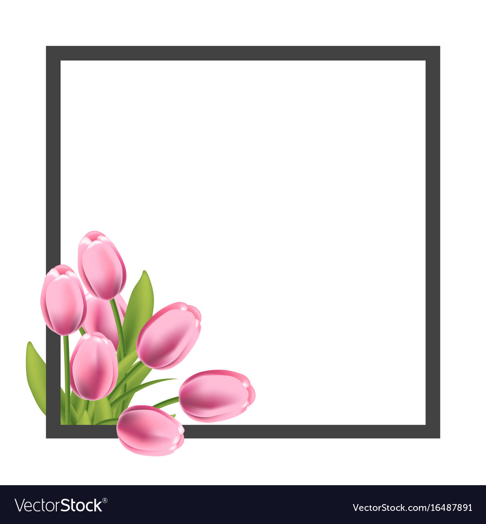 Realistic tulips flower frame blank template for Vector Image