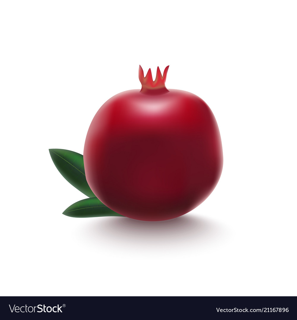 Realistic detailed 3d whole pomegranate with half