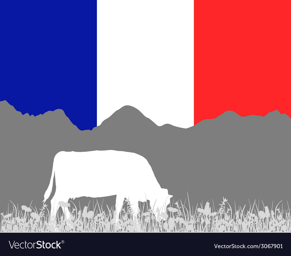 Cow alp and french flag