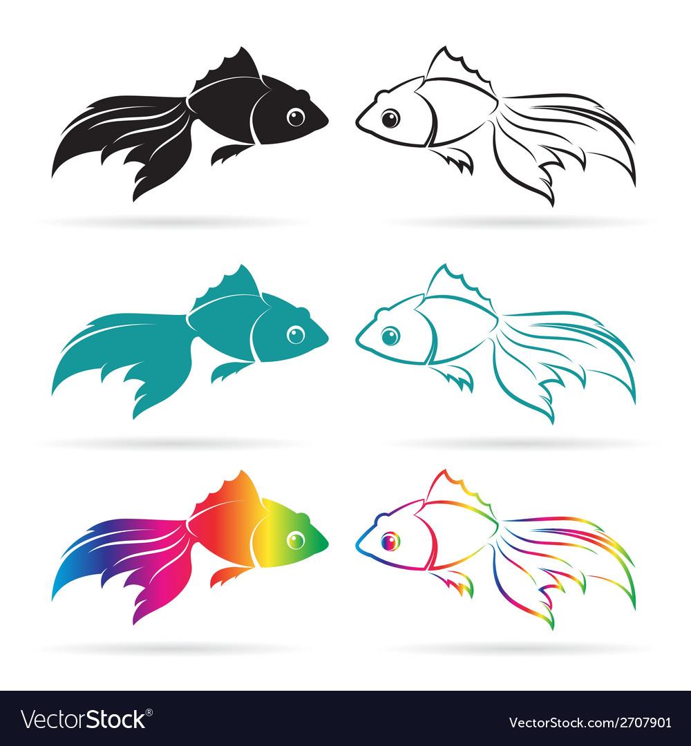 Goldfish vector image