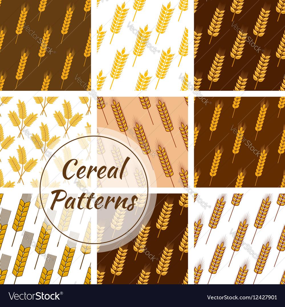 Wheat cereal grain rye ears seamless patterns set