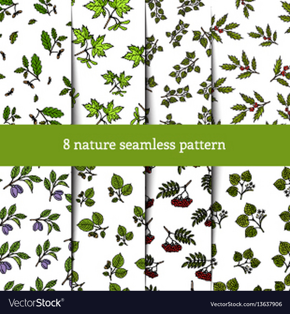 Set of seamless pattern with tree branches
