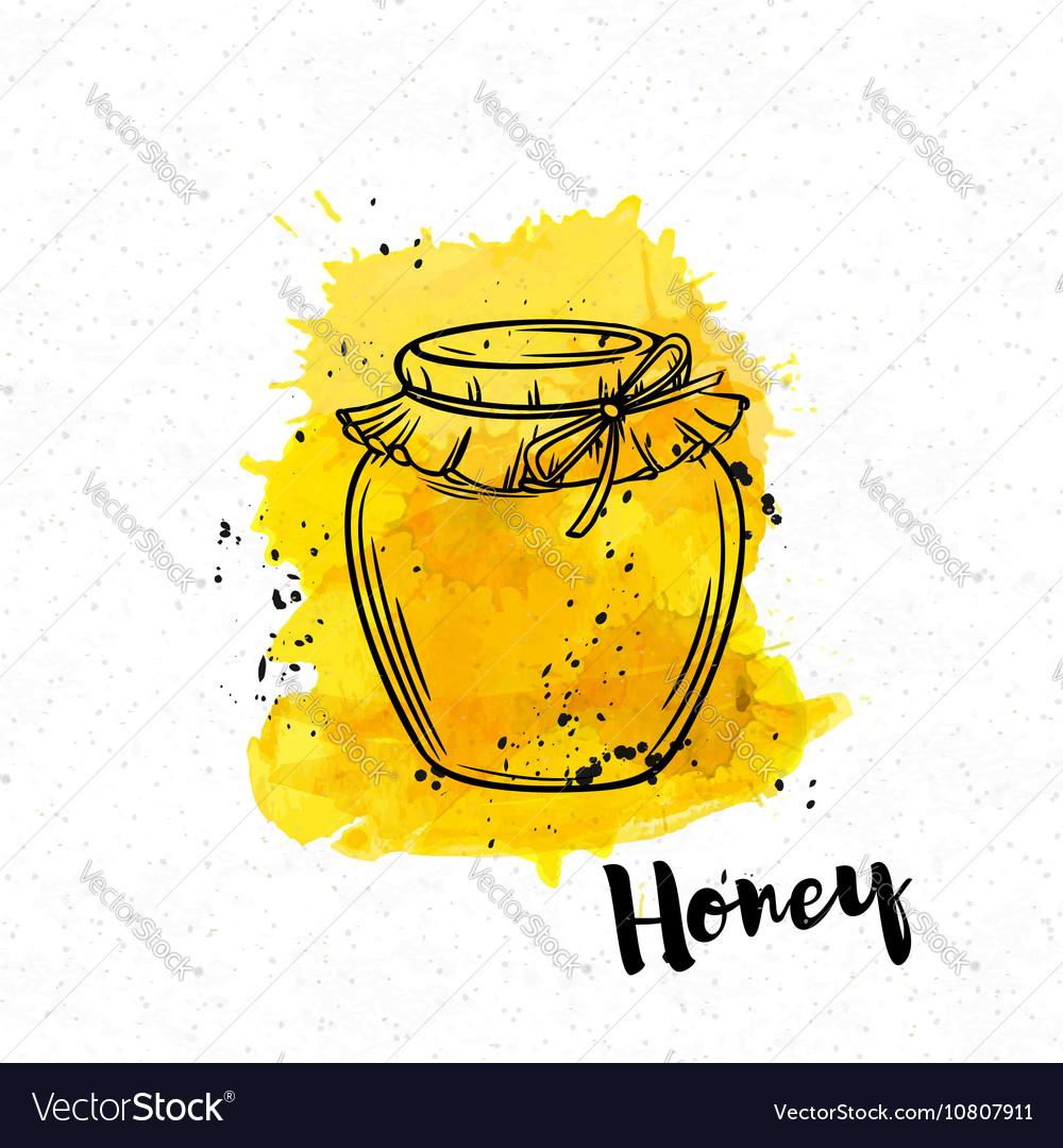 Hand drawn Honey bank vector image
