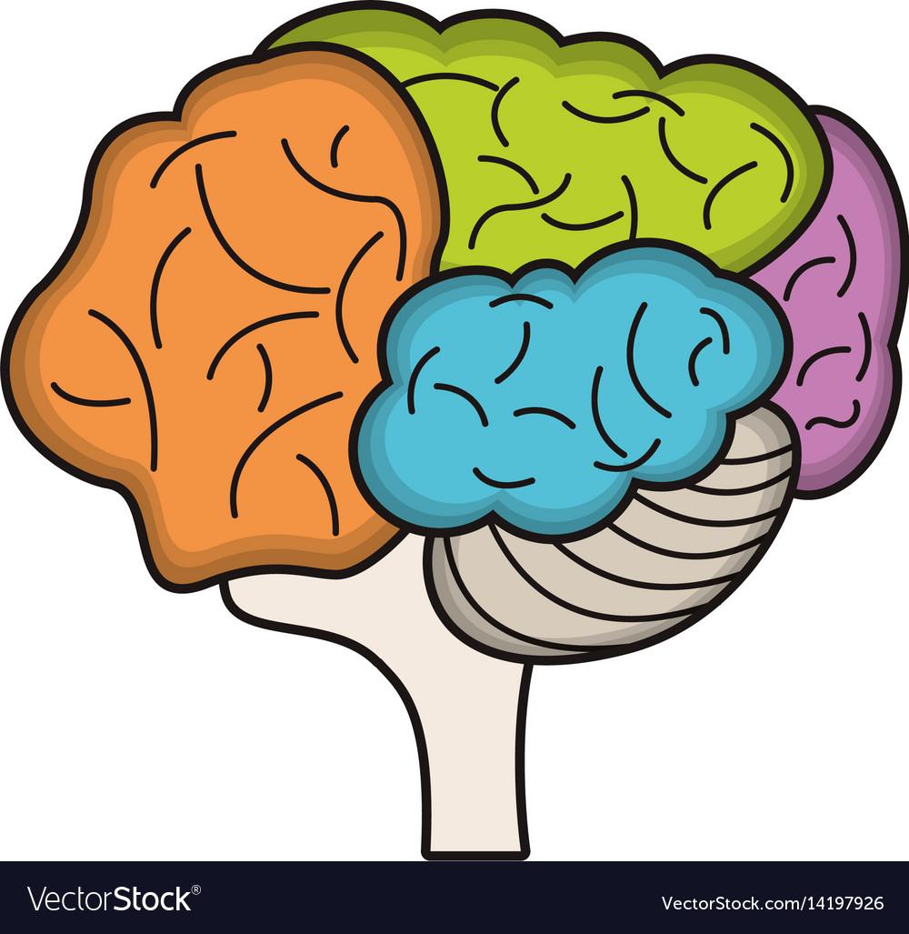 Colo brain idea innovation