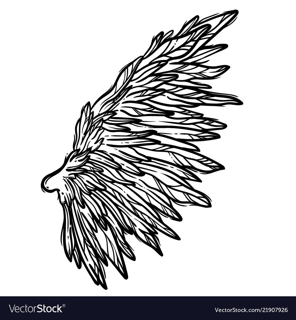 Line art of angel wings hand drawn